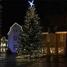 Weihnachtsbaum auf dem Rathhausmarkt in Eckernförde